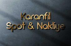 Karanfil Spot Nakliye